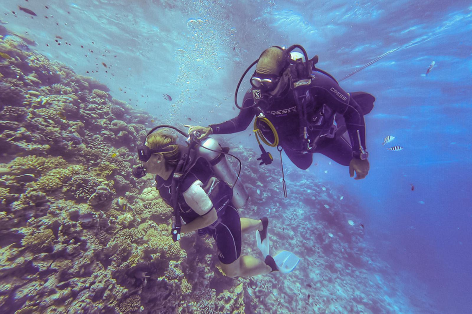 Dedico Advanced Diving Certification