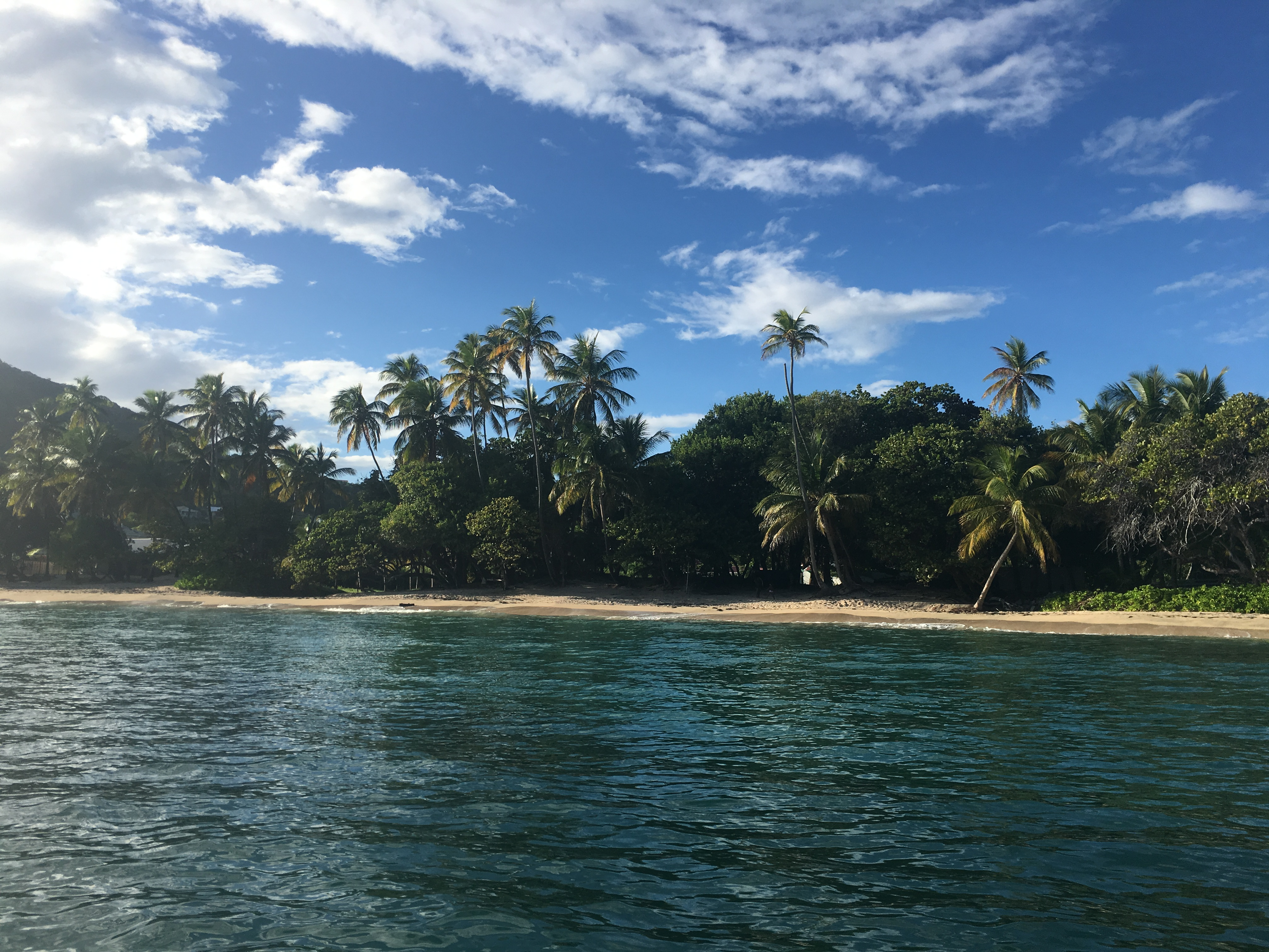 Passing Caribbean shoreline.