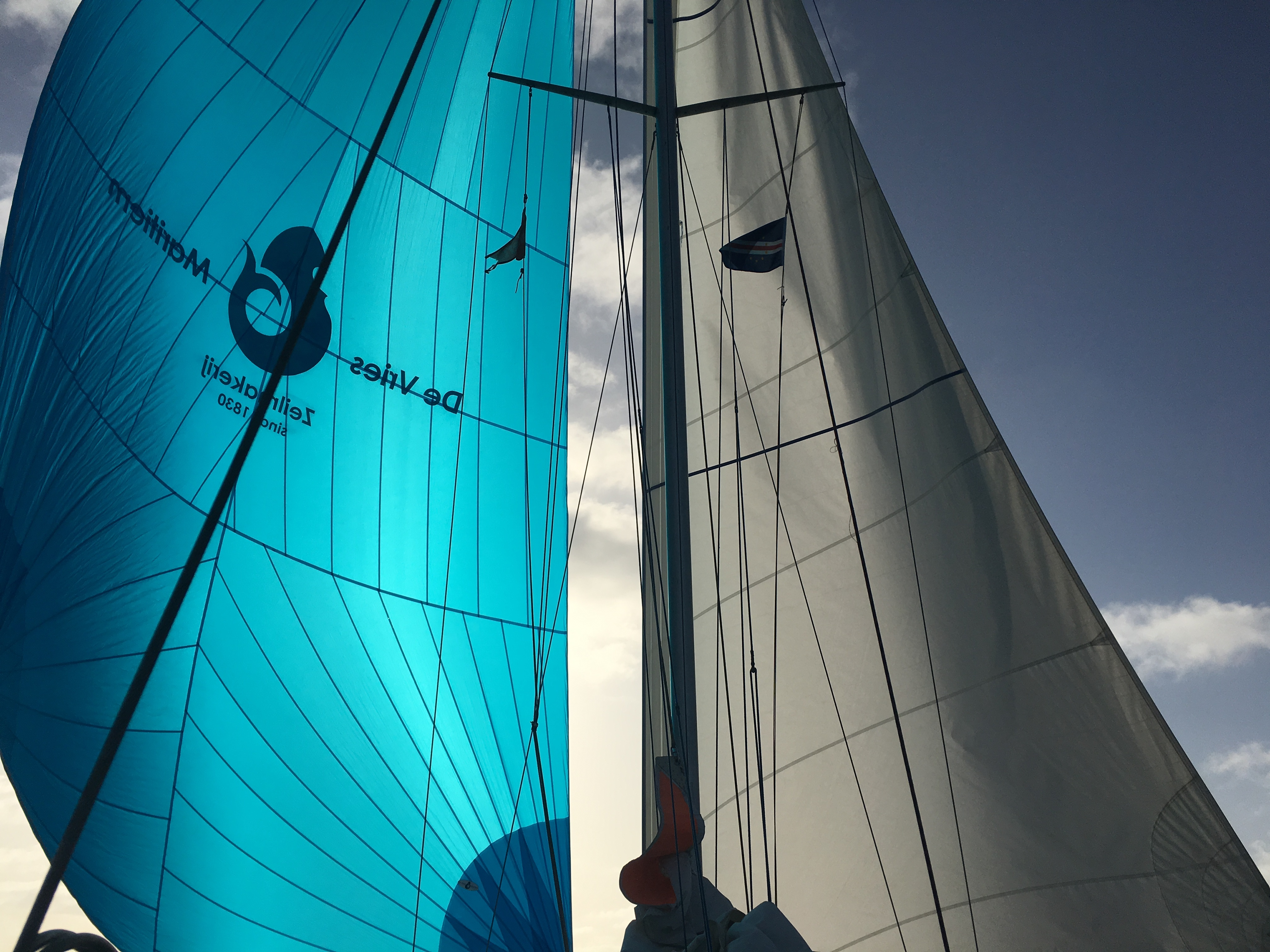 Their gennaker (left) and mainsail (right).